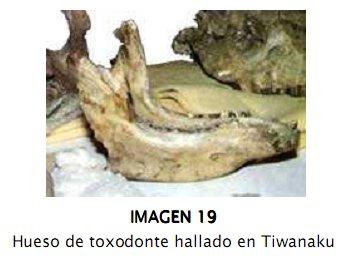 tiwa19